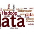 Big Data/Hadoop
